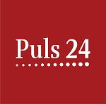 Пулс24